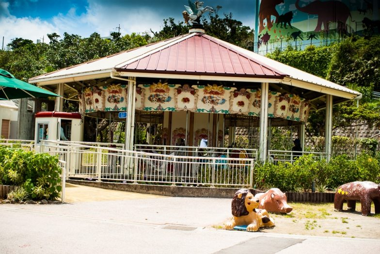 Okinawa Zoo | Okinawa Hai
