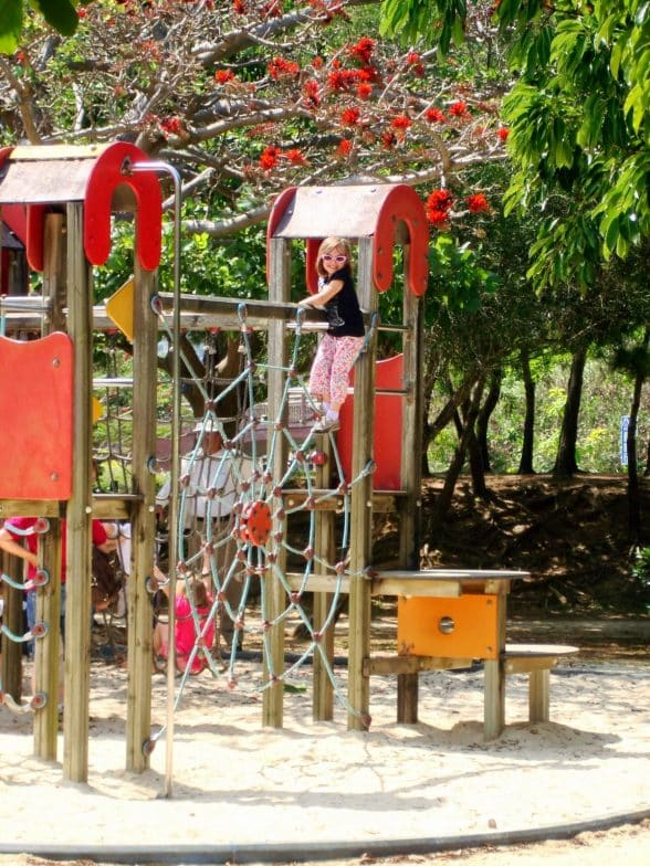 Comprehensive Park playground1