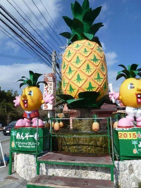Pineapple Park-001