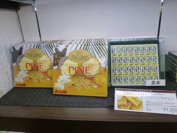 Pineapple Park-009