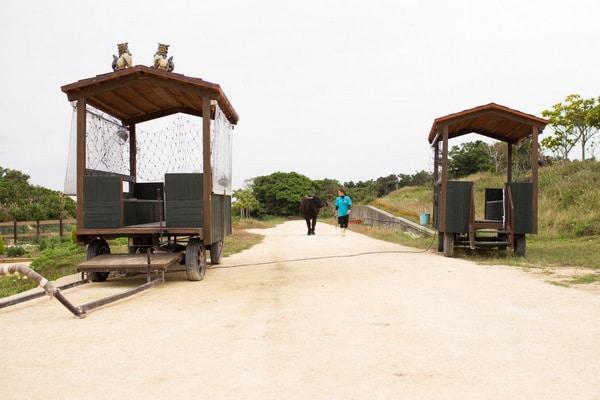 Uchina Farm-11
