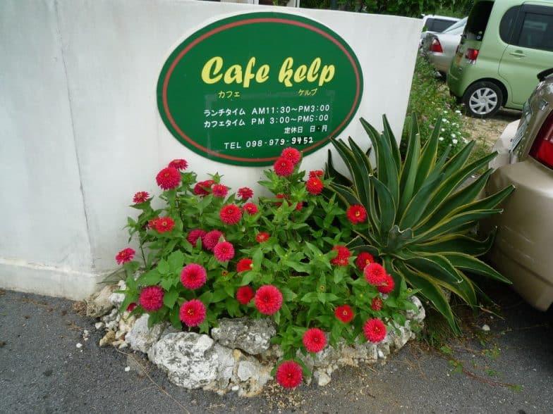 Cafe Kelp