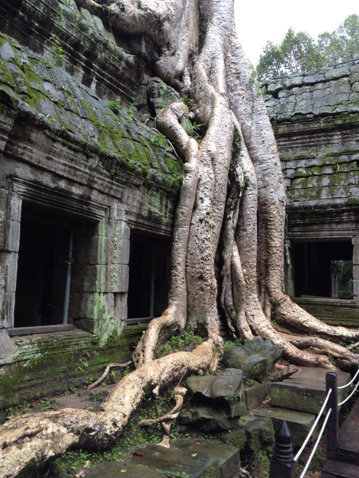 Cambodia: Siem Reap with Katrina l Okinawa Hai!