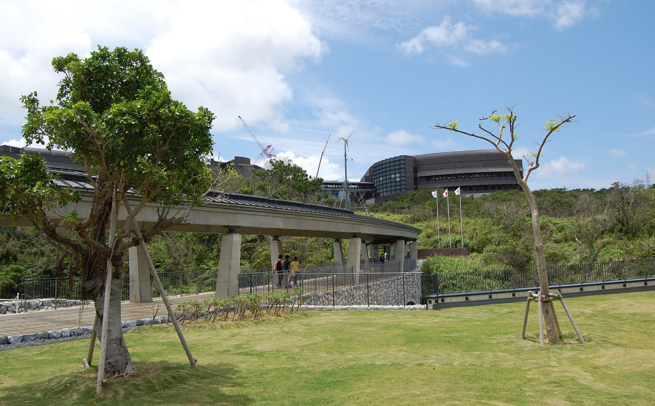 Okinawa Institute of Science and Technology (OIST)
