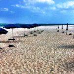 Kumejima Island, Part 3 l Okinawa Hai!