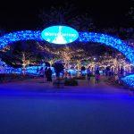 Christmas in the North l Okinawa Hai!