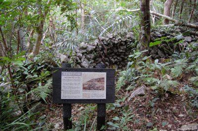 Yamashishigaki Mutayama Trail | Okinawa Hai!