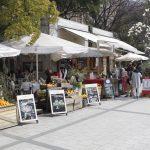 Etajima & Hiroshima Peace Memorial Park | Okinawa Hai