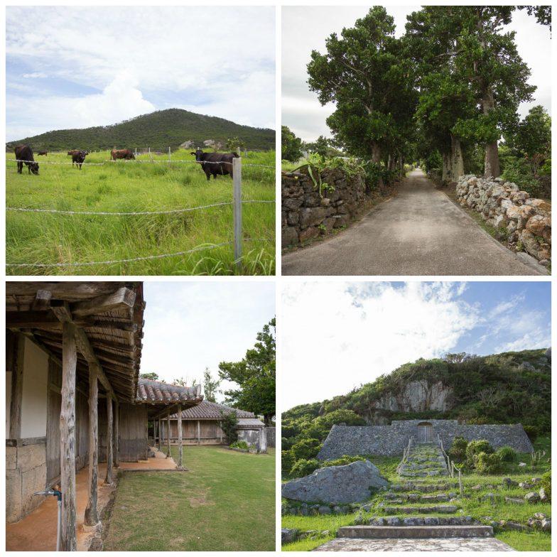 Things to Do Izena Island