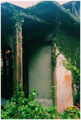 Bakery Suien | Okinawa Hai