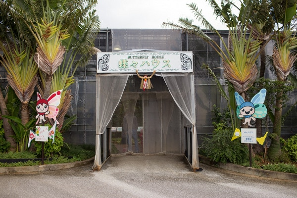 Ryugujo Butterfly Garden_-8