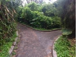 Cape Maeda9