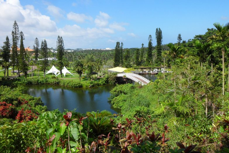 Jul local events with Okinawa Hai at Southeast Botanical Garden